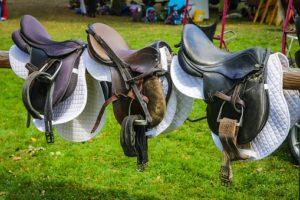 Pferdepflege, Sattel und Zaumzeug